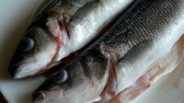 рибни изкушения