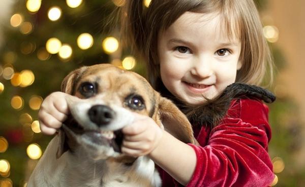 Избор на кученце за вашето дете – на какво да обърнете внимание
