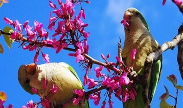 13 важни неща, които трябва да направим през април