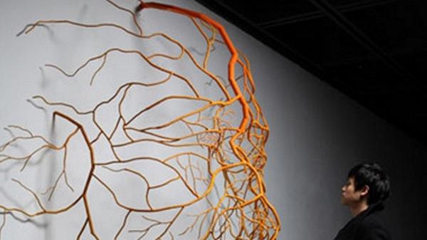 """Впечатляващи скулптури, изваяни от """"корени"""""""