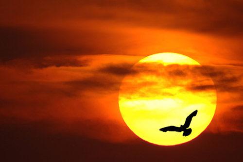 Слънчев календар: Всичко, което произнесете на глас може да се сбъдне