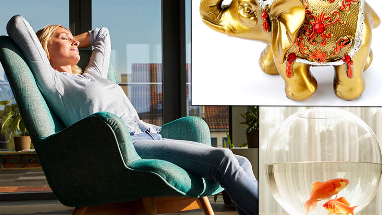 5 предмета, които привличат богатството във вашия дом