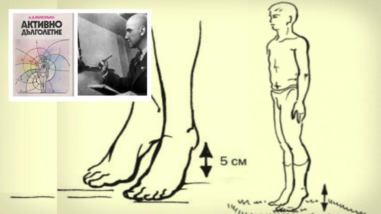 Виброгимнастиката предотвратява тромби, инсулт и инфаркт