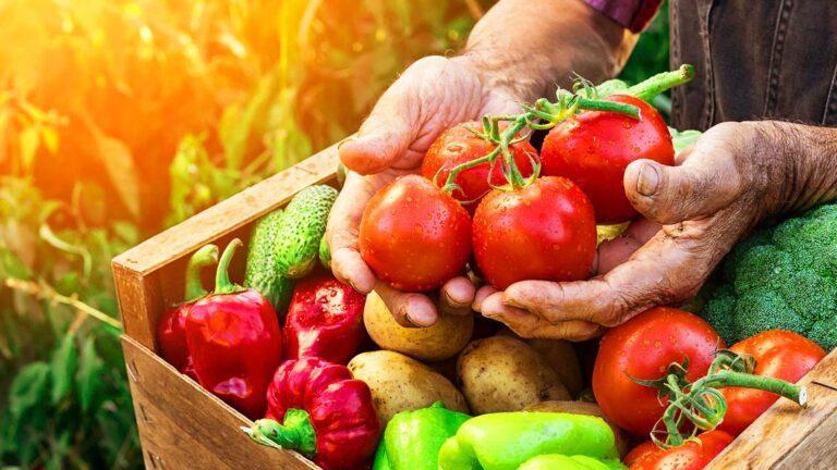 От фермата до чинията  или как да разпознаем истинските биопродукти?
